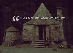Wait wait wait. Dumbledor told this to Harry knowing Harry would die. Hagrid did have Harry's life in his hands as he walked back to Hogwarts from the forest in the last book. Mind blow. Best foreshadowing ever!