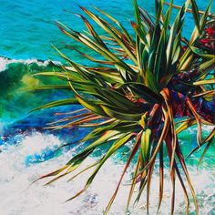 Noosa Artist Susan Schmidt   Talented local Noosa artist Susan Schmidt has just completed this stunning Pandanus painting.  A unique work because these days Susan mostly paints her Pandanus works on commission and only occasionally indulges herself painting them for the sheer pleasure.  'Pandanus Break' is one such indulgence that an art lover will find hard to resist.  'Pandanus Break' 120x120 acrylic and oil on canvas  To see more images of Susan's art and her limited editions visit…