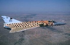Cheetah✈South African Air Force Air Force Aircraft, Fighter Aircraft, Fighter Jets, Military Jets, Military Aircraft, Mirage F1, South African Air Force, Aircraft Painting, Aircraft Photos