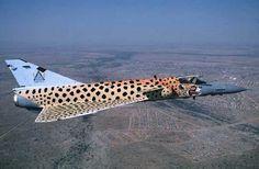 Cheetah✈South African Air Force