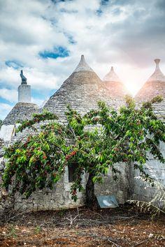 """Alberobello, Puglia, Italy ♥ Source: 500px / Photo """"Trulli and cherry trees... a taste of Puglia!"""" by Sabino Parente"""