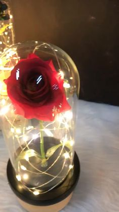 Black Wallpaper Iphone, Rose Wallpaper, Diy Wedding Flowers, Diy Flowers, Christmas Holidays, Christmas Videos, Rose In A Glass, Branch Decor, Gift Ideas