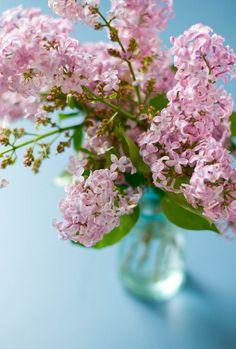 Lilac Print by rikkisnyder on Etsy, $15.00