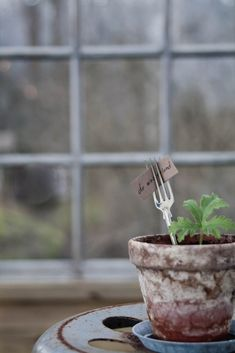 Vintage: Vår för Hemtex | Great idea! Repurpose fancy old forks by sticking them into plant pots as placecard holders for the dining table, or as namecard holders in order to identify potted plant seeds and cuttings!