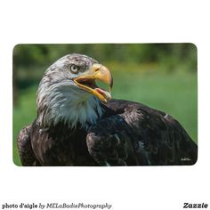 Photo plate of eagle serving tray - home gifts ideas decor special unique custom individual customized individualized Food Serving Trays, Food Trays, Photo D Aigle, Pet Gifts, Home Gifts, Diy Stuffed Animals, Floor Mats, Bald Eagle, Sun