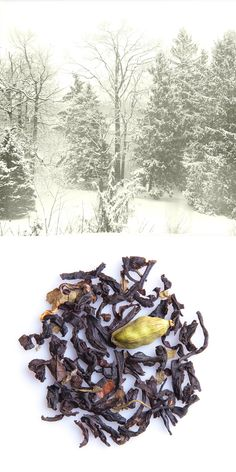 CIVIL DISOBEDIENCE – robust black tea with cardamom and tobacco notes  •  Tastes Like: pine needles, cardamom skin, maple sap, fire logs, sweet tobacco.  •  Feels Like: fireside after a winter walk.