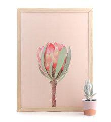 Pink Protea Print www.cloudninecreative.co.nz