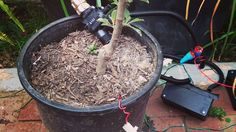 Make a Programmable Irrigation Controller with a Raspberry Pi
