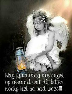 Angel - via Vintage Rose Collection Color Splash, Color Pop, Colour, I Believe In Angels, Angels Among Us, Romantic Roses, Splish Splash, Vintage Roses, Cherub