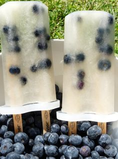 lemon lime and blueberry popsicles