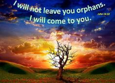 Bible Alive: John 14: 18. I will not leave you comfortless: I will come to you. KJV