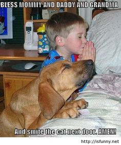 Funny praying kid and dog picture 2015 isfunny.net