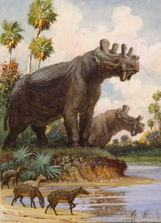 C.R. Knight - Uintatherium with Eohippus in the foreground