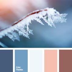 Color Palette #1728