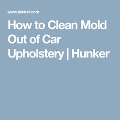 How to Clean Mold Out of Car Upholstery | Hunker