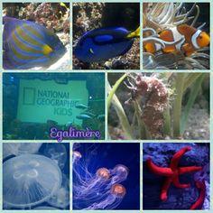 Aquarium de Paris