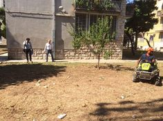 Bari avviati i lavori di potatura e sfalcio nelle aree di viale Japigia di proprietà di Arca Puglia