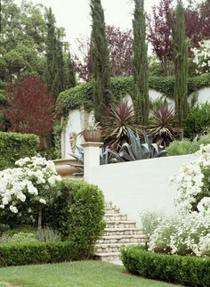 Gabriela Yariv Landscape Design