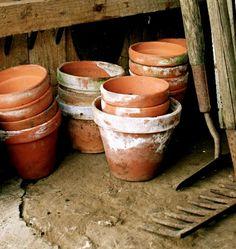 ...flowers need pots...