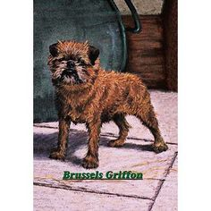 Buyenlarge 'Typical Brussels Griffon Champion' Painting Print