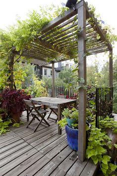 Holzterrasse holz Pergola-Kletterpflanzen rustikaler tisch