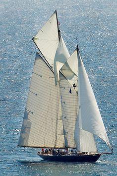 kendradaycrockett: Pendennis Cup 2014 - Falmouth - 42 meter Gaff Schooner MARIETTE OF 1915 by Bob.Bee on Flickr.