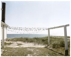 joel meyerowitz photography - Pesquisa Google