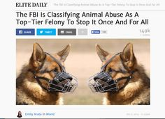 FBI will crack down on all animal abuse
