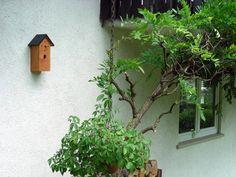 Eine Kombination von Wanduhr und Nistkasten, bei diesem Modell geeignet für den Gartenrotschwanz. Ein Blickfang für den Bereich Terrasse und Garten. Material und Herstellung zu 100% im Schwarzwald