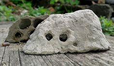 гнездо-грязевой-осы-из-грязи