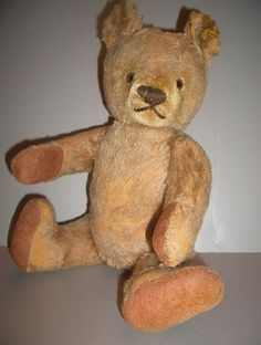 Old Steiff Teddy Bear