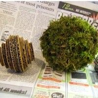 Free Kids Crafts - Scented Mossy Orbs