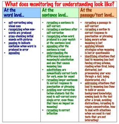 monitoring for understanding rubric