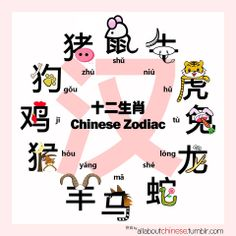 Do you know which Chinese 'Zodiac' animal you are?