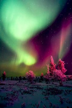 aurora borealis. I want to go there and stay there, forever, and ever, and ever  and just listen to under the milkyway by the church. for the rest of my life.