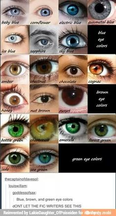 Eye Colors.  ifunny.co