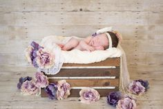 Purple and neutrals with lace. Newborn baby girl asleep in wood-stained crate with lace, pearls, and floors on seamless paper/fake wood backdrop
