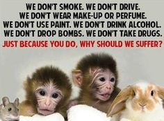 No greater evil on earth  HUMAN Research your brands! PLEASE don't use products tested on animals!