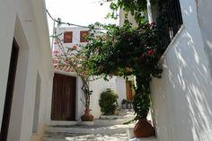 5 Μαΐ 2020 - Ολόκληρο σπίτι/διαμέρισμα for convient appartment in the centre of village Glossa,with a wonderfull view. Glossa is a. Skopelos Greece, Wreaths, Island, Plants, Lemon, House, Door Wreaths, Home, Islands