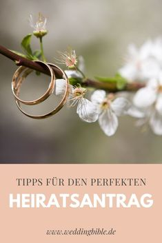 Ring Verlobung, Proposal, Dates, Place Cards, Place Card Holders, Getting Married, Best Planners, Perfect Wedding, Switzerland