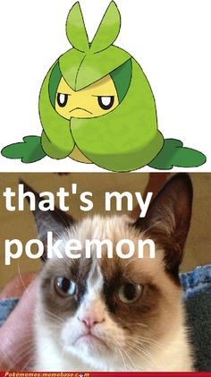 That's my Pokemon