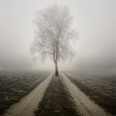 Paradox Road