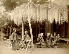 in love with this Wisteria Trellis from this 130 year old Japanese Photo.