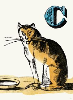 """C Cat"" - From the Chapbook Alphabet Print Collection 