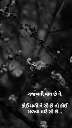 Cute Quotes, Best Quotes, Hiding Feelings, Radha Krishna Quotes, Feeling Quotes, Postive Quotes, Gujarati Quotes, Zindagi Quotes, Memories Quotes