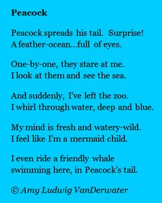 The Poem Farm: Peacock - A Couplet Poem - This whimsical peacock poem joins hundreds more over at The Poem Farm, Amy Ludwig VanDerwater's ad-free, searchable, no sales blog full of poems, poem mini lessons,and poetry ideas for home and classroom - www.poemfarm.amylv.com