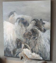 cabras lonquimay