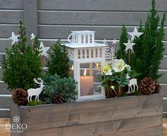 Christmas Garden, Woodland Christmas, Winter Garden, White Christmas, Christmas Crafts, Christmas Decorations, Xmas, Autumn Hill, Flower Boxes