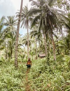 I spent one month living on Siargao and had the adventure of a lifetime. These are the best 30 things to do on Siargao: THE ULTIMATE BUCKET LIST Visit Philippines, Siargao Philippines, Asia Travel, Italy Travel, Subic Bay, Siargao Island, Beach Clean Up, Vacation Resorts, Dream Vacations