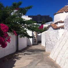Immersed in a deeply spiritual atmosphere in Patmos , the  Apocalypse Island